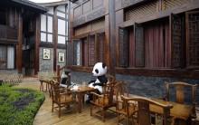 Novo Hotel Temático na China Inspirado em Urso Panda – Preço de  Diárias, Fotos