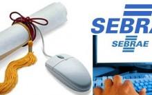 Curso Gratuito SEBRAE 2013- Curso SEBRAE Online, Inscrições, Cursos