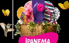 Nova Coleção de Chinelos Ipanema que Trocam as Tiras Verão 2013 – Modelos, Qual o Preço Comprar  Loja Virtual