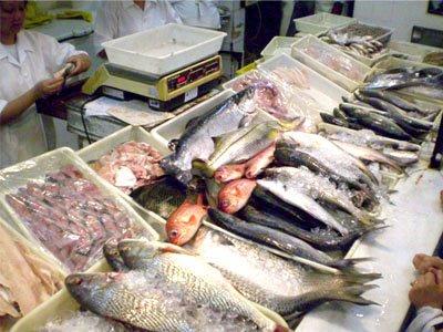 Peixe-cuidados-ao-comprar