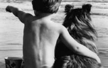 Cuidados Que Devem Ser Tomados Com Alimentação De Cães – Dicas