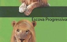 Os Diferentes Tipos De Escova Progressiva – Dicas e Fotos