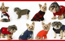 Roupas de Cachorro Para Inverno 2013 – Onde comprar