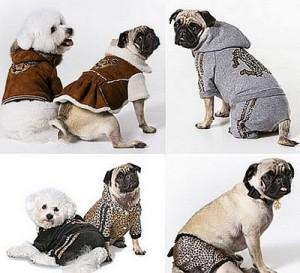 Revender Roupa de Cachorro – Onde Compra, Dicas, Modelos (1)