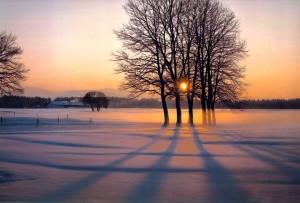 Tendências de Sapatos para o Inverno 2013 – Dicas, Informações (3)