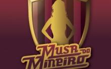 Gata do Campeonato  Mineiro 2013 – Participantes, Como Fazer a Votação