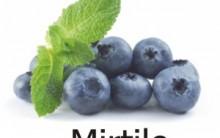 Fruta Mirtilo – Quais Seus Benefícios, Para que Serve Qual o Preço e Onde Comprar