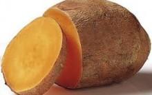 Batata Yacon Alimento Funcional  – Quais os Seus Benefícios