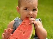 Quais as Frutas que os Bebês Mais Gostam – Saiba Mais