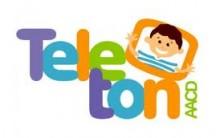 Teleton 2013 – Fazer Doação Online  e Programação