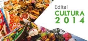 CTAv-Cultura-2014-500x2352
