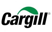 Programa de Trainee Empresa Cargill 2014 –Como se Inscrever