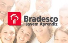 Programa Jovem Aprendiz Banco do Bradesco 2014 – Como se Inscrever