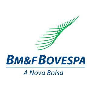 BM&F Bovespa 2014