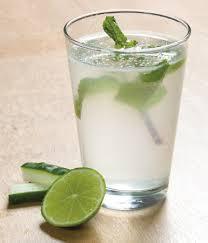 Dieta da Água de Sass  Desintoxicante  do Organismo e do Corpo – Receita e  Como Fazer