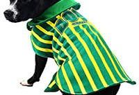 Roupinhas Copa do Mundo 2014 Para Cachorros – Ver Modelos e Onde Comprar