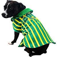 cachorro-com-roupa-brasil