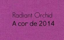 Como Usar a Cor Tendência de 2014 Orquídea Radiante – Dicas e Fotos