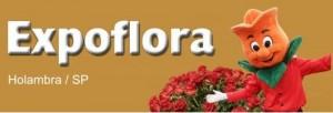 Holambra_Expoflora1