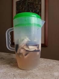 Dieta da Água de Berinjela
