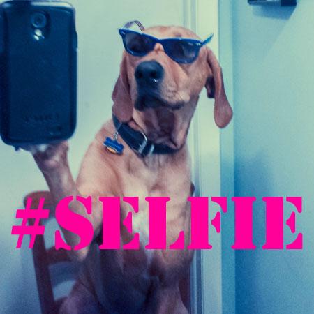 Como Fazer Foto Selfie  Para Instagram –Modelos e Dicas