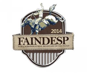 FAINDESP2014-600x500