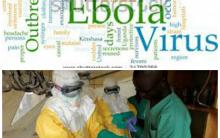 Virus Ebola – O que? Sintomas, Tratamento, Vacina e Porque Pode Matar