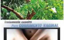 Barbatimão Para Corrimento Vaginal – Como Preparar o Chá Caseiro