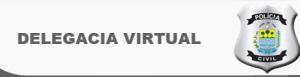 Delegacia Virtual DF