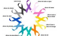 Rede Social Onco Vida – O Que é, Como Funciona e Participar