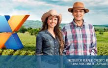 Crédito Rural Banco Caixa – Como Contratar Online
