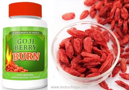 Goji Berry Burn Emagrece? – Quais os Benefícios e Onde Comprar