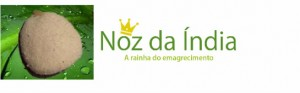 noz-da-india