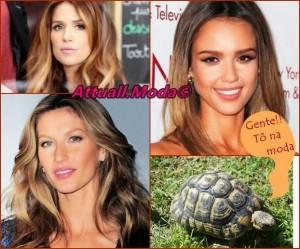 Efeito-Tartaruga-ou-Tortoiseshell-Hair-como-fazer
