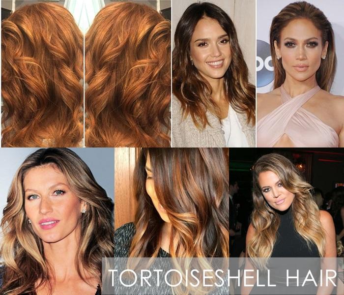 Tortoiseshell Hair Luzes Efeito Tartaruga Tendências 2015 – Fotos