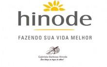 Perfumes Importados Hinode 2016 –  Tonar-se Revendedora