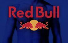 Programa Trainee Red Bull 2017 – Como Participar