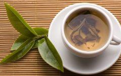 Chá de Jambolão Excelente Para Diabéticos – Benefícios