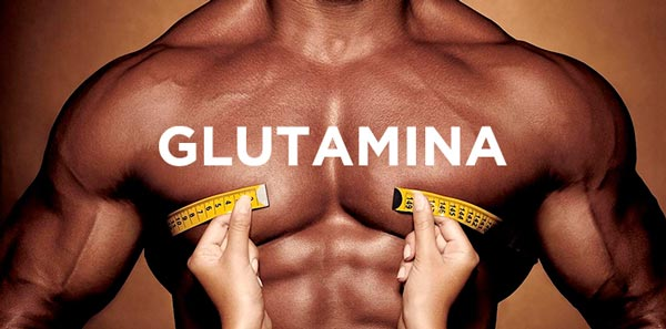 Onde Comprar o Produto a Glutamina Para o Corpo