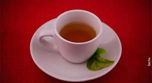 Benefícios do Chá de Pitanga Controla Diabetes