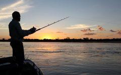Licença de Pesca Amadora – Como Fazer a Sua Solicitação