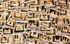 Exposição Caminhando em seus Sapatos 2017 – Agenda e Descrição
