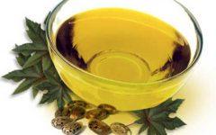 Chá de Arruda Remédio Caseiro – Como Preparar e Como Consumir