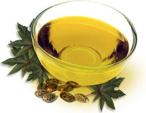 Chá de Arruda Remédio Caseiro