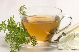 Como Preparar e Como Consumir o Chá de Arruda Remédio Caseiro
